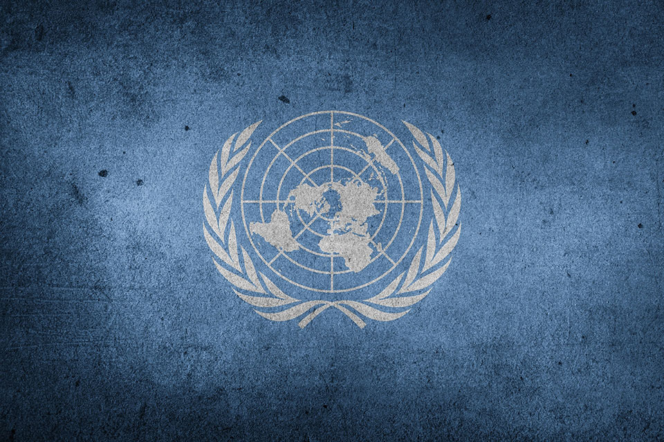 Wielcy stawiają na e-zakupy. #1 ONZ